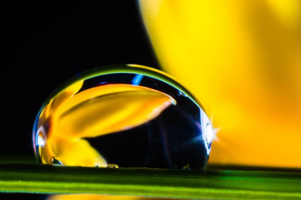 Quels sont les moyens de profiter des bienfaits des huiles essentielles ?